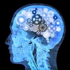 mind4
